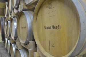 Vini_Verdi_Pavia